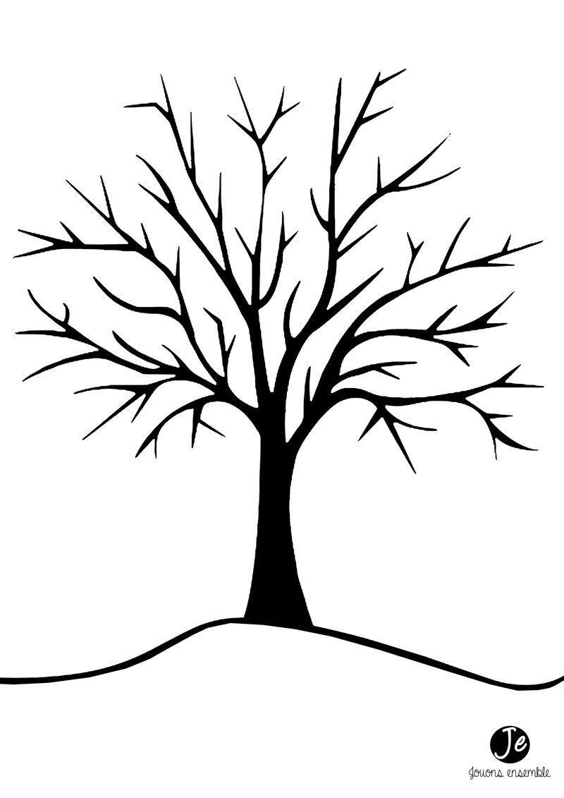 Arbre d 39 automne - Comment s appelle l arbre du kaki ...